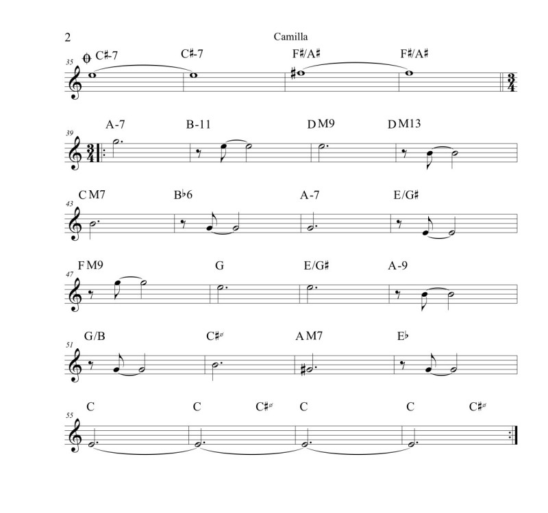 Camilla-Concert copy_2
